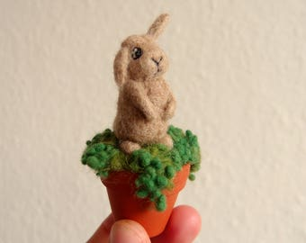 Needle felted Bunbun sitting in a real miniature clay flowerpot