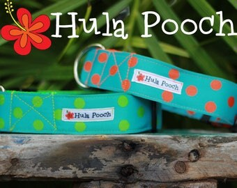 "Dog Collar ""Seeing Spots"" Orange Turquoise Lime Green  - Medium, Large, Wide, Adjustable // FREE SHIPPING"