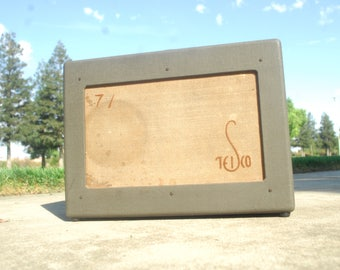1950s teisco guitar amp rare and awesome OMG!!!!!