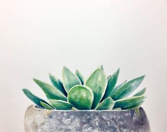 Simple Succulent, original watercolor, 9x12 inches, succulent in a concrete planter