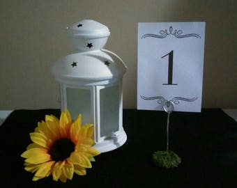 Set of 6 Moss Table Number Holders