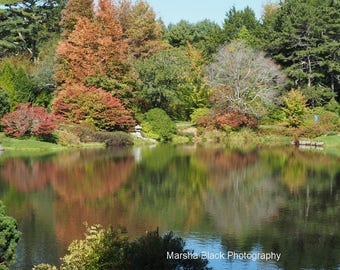 Changing Fall Colors Mt. Desert Island Maine Prints, Fall Colors Wall Art, Fall Colors Notecard, Lake Decor, Travel Note Cards
