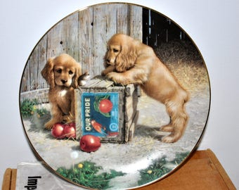 Double Take by Jim Lamb, Collectible Plate, Puppy Playtime Plate Collection, Porcelain Plate, River Shore, Puppies Art, Puppy Artist Plate