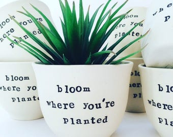 Ceramic Planter, Indoor Planter, Pottery, Succulents, Housewarming Gifts, Made in Australia.