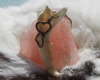 Real Cat Mandible Necklace - Cat Jaw Bone Necklace with Bronze Hearts