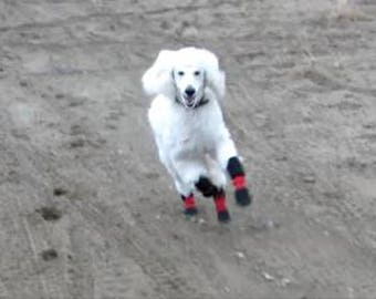 Dog boots for dogs with allergies sensitive skin or paws.