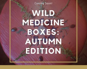 Wild Medicine Boxes: Autumn Edition- Community Supported Herbalism