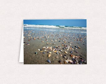 Hammocks Beach State Park Shells Photo Note Cards 5x7 Greeting Card Blank inside NC Beach Stationary Beaches Waves SOBX