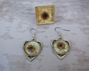 Natural Flowers jewelry set, Resin Earrings, Real Flower Earrings, Flowers Daisy Earrings, dried Daisy Earrings, Real Daisy ring, Daisy ring