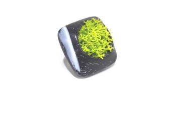 Lichen and polymer clay ring