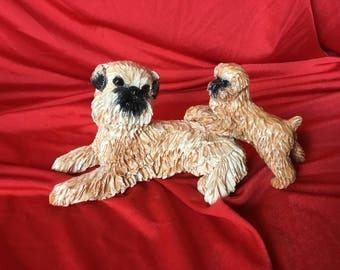 Brussels griffon with puppy