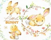 Little Bunny. Cute animal clipart, watercolor, woodland, forest, wreath, floral, greeting, invite, babyshower, kids, nice, wild, fxbn