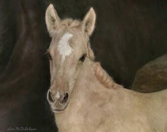 Horse Painting, Western Art, Horse Oil Painting, Horse Foal Art, Kiger horses, Iberian horses