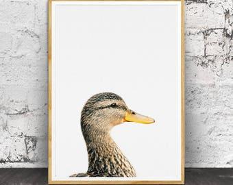 Duck Print, Nursery Animals, Nursery Animal Print, Nursery Print, Duck Wall Art, Nursery Wall Art, Nursery Decor, Nursery Printable, Duck