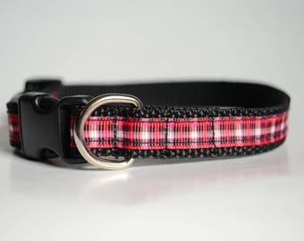 Dog Collar, Small Breed Dog, Puppy Collar, Cat Collar, Adjustable Collar, Buckle Collar, Collar with Bell, Polypro Collar, Webbed Collar