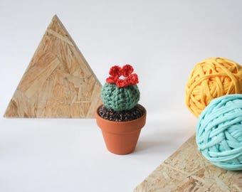 Mini Crochet Cactus