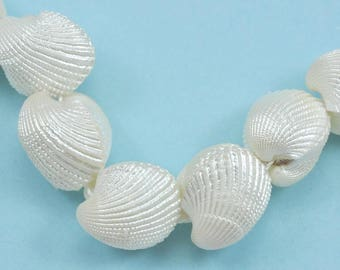 Natual Whole Clam Shell  Clamshell Beads for Jewellery Making