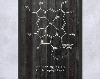 Framed Chlorophyll Molecule Science Print Gift, Plant Biology, Plant Life, Botany, Botanist, Scientist, Framed Science Print, Framed Print