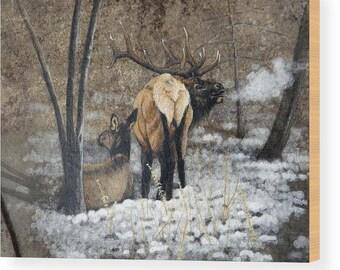 Guarding Bull Wood Print