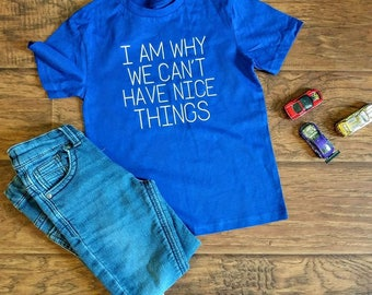 I Am Why We Can't Have Nice Things - Toddler T-Shirt - Kids Tee - Children's Shirt - Blue - Size 4 - Generous Fit