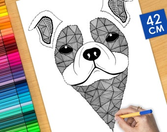 Poster / Poster deco coloring (42cm) dog Bulldog - coloring for adults