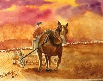 flamboyant farmer
