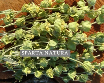 Greek mountain tea Sideritis Pindou 1,42 oz. (40 gr.) - yummy and healthy!