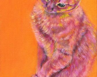 CLEMENTINE - Pretending to be Shy.  cat lover, cat art, orange cat, kitty art, baby, birthday, wedding, anniversary, pink, orange, yellow