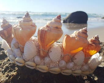 Shell crown.  Seashell tiara, Mermaid design, Natural shell crown