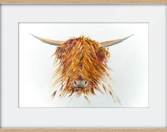 Hamish the Highland Coo, framed print, limited edition (50) signed and numbered, size 50cm x 40cm, cow art, Scottish art, gift, highland coo
