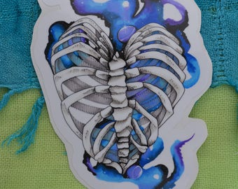 "Rib Cage 5"" Decal"