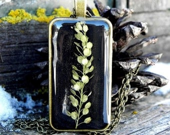Resin locket necklace, Plant resin locket, Nature inspired terrarium jewelry, Real pressed flower pendant, Gardening gift, Nature lover gift