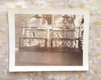 Vintage Black & White Photograph Birds in Cages on Porch Photo Animal Pets
