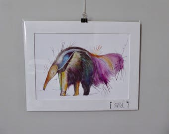A4 Anteater Watercolour Print - 250gsm