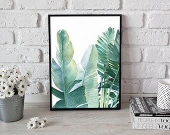 plant print, botanical illustration, leaf art - 3 sizes available Giclee print