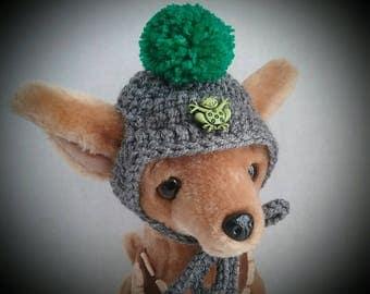 Small Dog hat, Chihuahua hat + free shipping