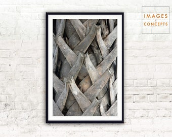 Abstract Nature Digital Print ~ Contemporary Art ~ Palm Trunk Poster ~ Modern Photo ~ Printable Decor ~ Instant Download ~ Original Art