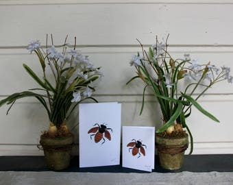 Bee - Limited Hand Signed Print and Greeting Card