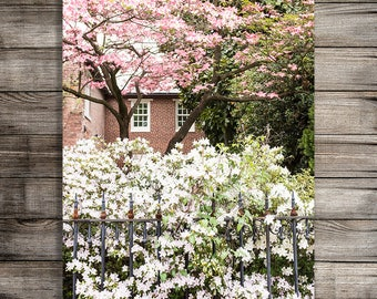 Printable Wildflower Photography Print, Blooming Tree Fine Art Photo, Garden Print, Digital Download