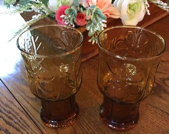 Retro Libbey Country Garden Amber Cooler Glasses / Flower / Drinkware / 1975