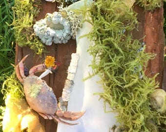 Living EcoShrines from the Pacific Northwest - Crab & Bone