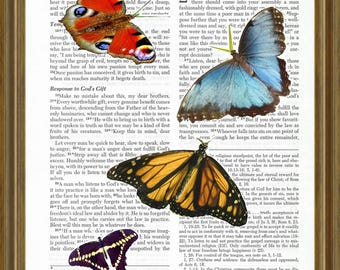 Butterflies on Bible Page