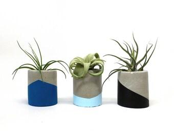 Set of 3 TINY concrete planters