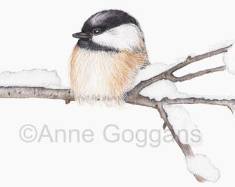 Black Capped Chickadee Bird in the Snow Watercolor Print 8x10 or 8.5x11