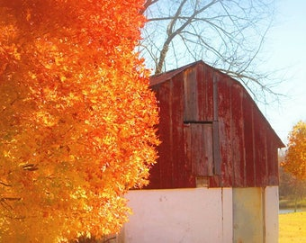 Barn In the Fall, Fine Art Photography,  Nature Photography, Architectural Photography, Color Photography