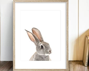 Rabbit animal nursery print, PRINTABLE nursery wall art P125