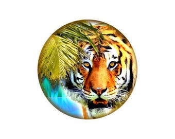 2 cabochons Tiger glass 14 mm - 14 mm