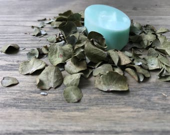 Eucalyptus Goats Milk Soap for baby/bridal shower, wedding, favor, accent and aroma therapy