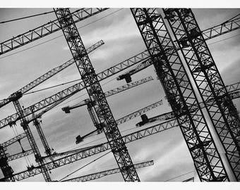 Cranes - DIN A5 print on watercolor paper