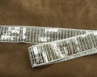 Very soft 2.5 cm - silver glitter stripe